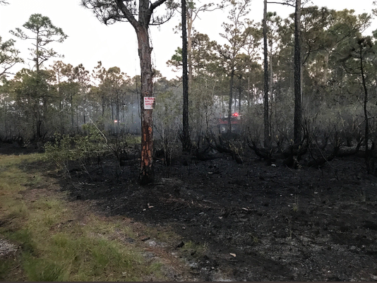 A three acre fire took place off Southeast Cobia Way and Southeast Hydrangea Street in Martin County. The cause is still unknown.