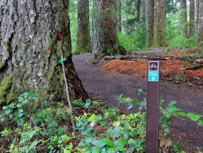 Follow these signs to the Silver Falls State Park bike