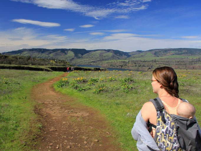 The Rowena Crest Trail takes hikers among wildflowers,