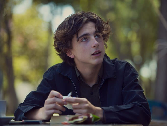 Timothee Chalamet is one of a handful of actors starring