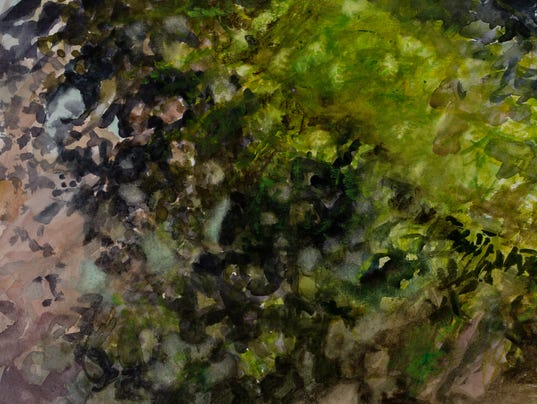 Rock-Moss-and-Lichen-Walker-Mountain-watercolor-11x14-2016-ShayHerring-Clanton.jpg