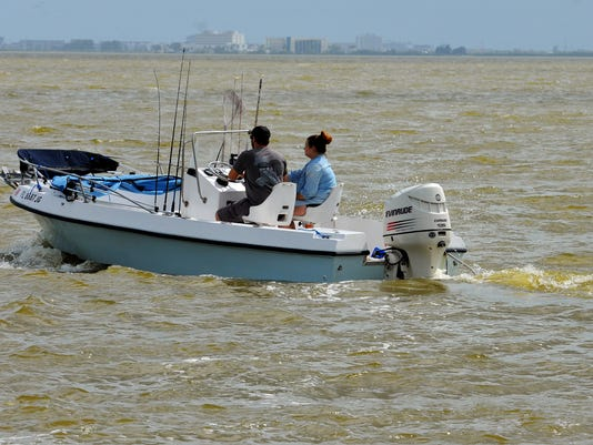Green Algae Joins Brown Tide In The Indian River Lagoon