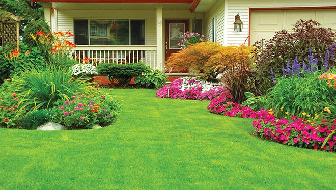 A properly designed lawn will take less time to maintain.