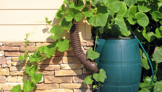 Consider installing a rain barrel to conserve water. (Dreamstime)