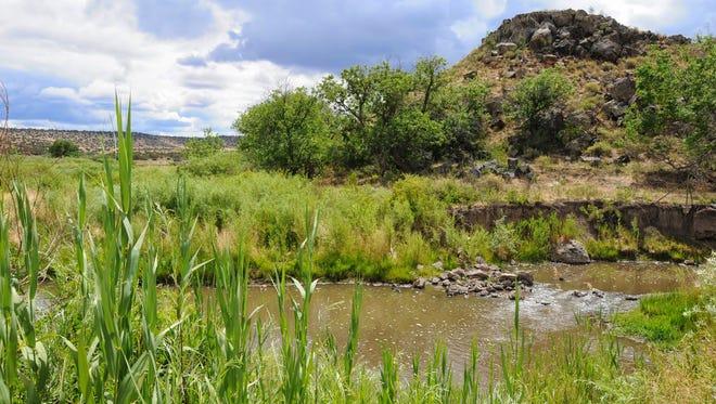 Beavertail Trail at Wenima Wildlife Area near Springerville.