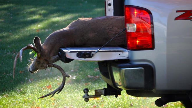 People who want to take car-killed deer from the scene of an accident no longer need to call local police to get the required tag. Instead, they can report the deer to a Wisconsin Department of Natural Resources call center.