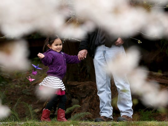 Akari Shulman, 4, walks hand-in-hand with her grandfather, Steve Nishimura, before the ceremony at the Bainbridge Island Japanese American Exclusion Memorial on Friday.