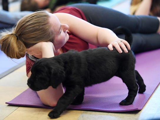 Amber Powell pets a puppy as it walks by during a Pilates
