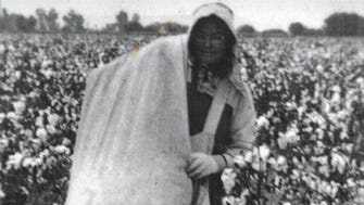 This woman was typical of those who made their living picking cotton in the 1930s and 40s, carry a 12-foot canvas bag over her shoulder probably on the way to have her cotton weighed.