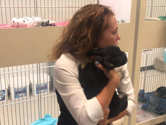 Puppies N Love spokeswoman Linda Nofer holds the dog