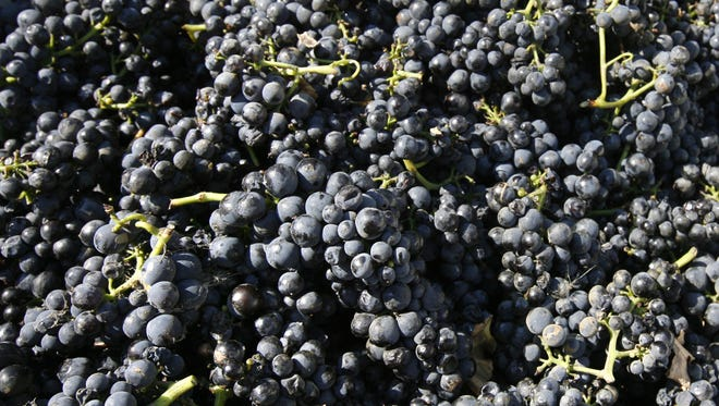 Join us for a lohud wine crush on Oct. 12 at Harvest on Hudson in Hastings.