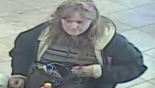 Michigan State Police are seeking help in identifying suspects in a Christmas Day theft.