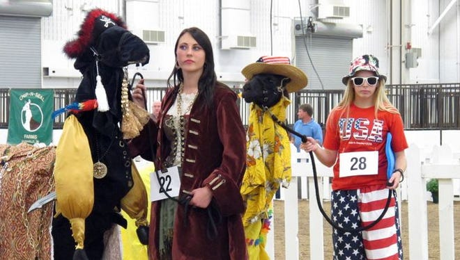 Participants compete in the llama costume contest at the Indiana State Fair.