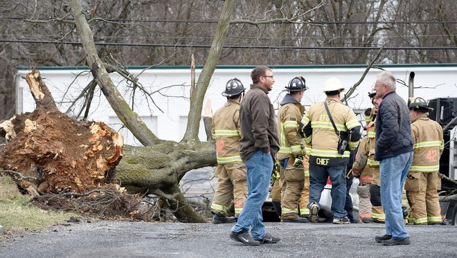 According to EMA dispatch logs: Ebenezer, Neversink, Jonestown, Rural Security, and Glenn Lebanon fire crews were dispatched at 1:05 p.m. Friday to 2024 Hill Street in North Lebanon Township for a rescue with a tree on a car.According to North Lebanon Township police:  Both a car and a truck were hit by the tree. There was only the driver in each vehicle. Both were extricated successfully, suffered minor injuries, and were not hospitalized.Only one lane was closed and the road was fully reopened after the incident.