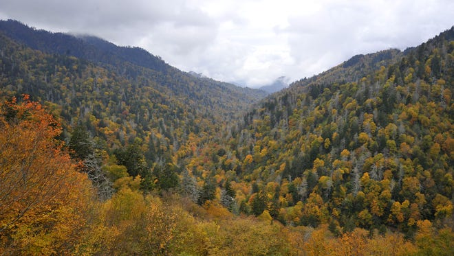 The Great Smoky Mountains National Park reopened Wednesday to visitors after NC and Tenn provided funds to run the national park for several days. In the park fall colors are at their peak in the higher elevations. 10/16/2013--Bill Sanders