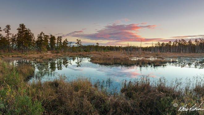 """Mullica Bend Basin II'' by Albert Horner."