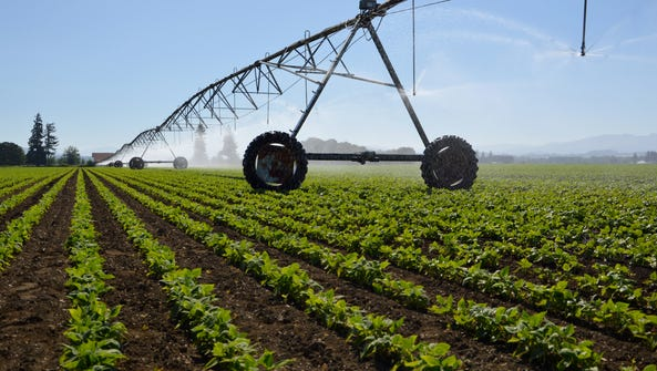 Linear irrigation systems in agriculture are touted