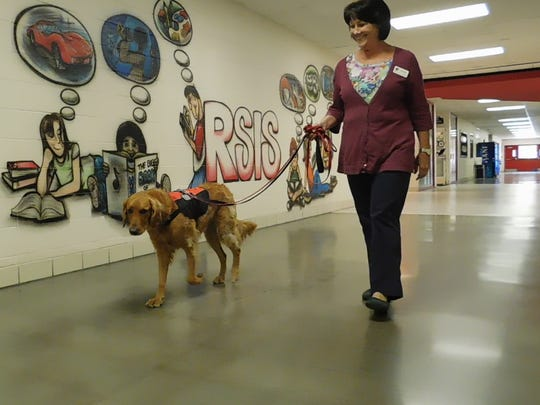 Teacher and handler Jancy Burke walks Ranger through