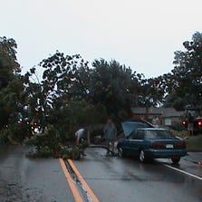 A fallen tree blocks Ann Arbor Trail west of Wayne Tuesday night. Residents worked as a team to clear the road and allow traffic to pass.