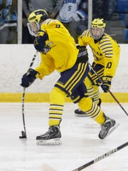 Hartland's Joey Larson takes a shot in a 3-0 loss to