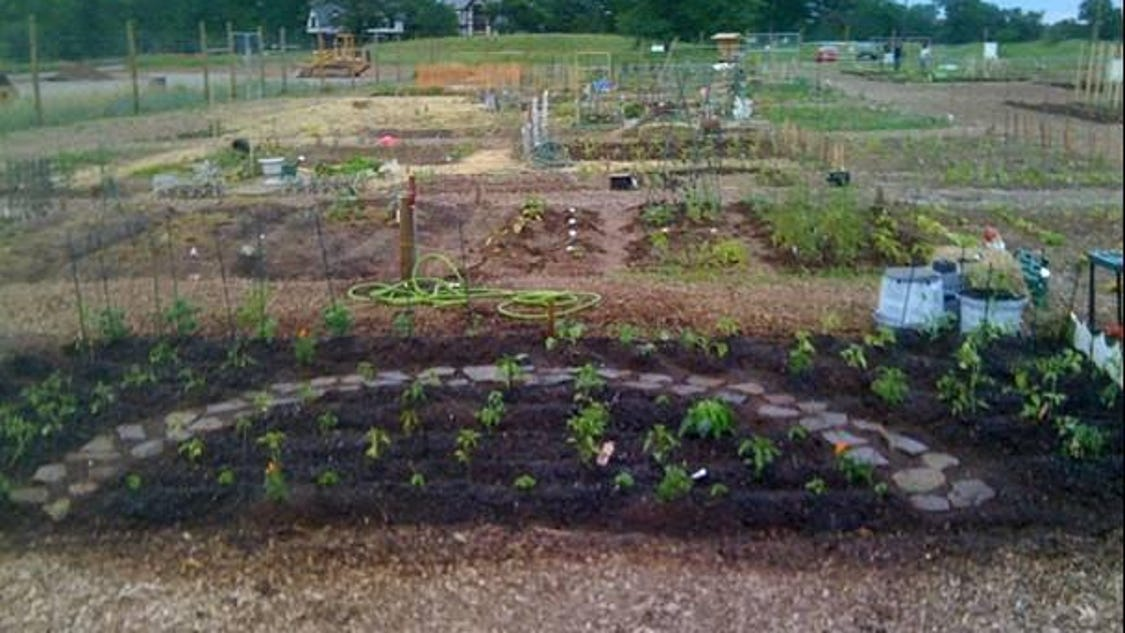 Community garden connects people plants for Local landscape gardeners