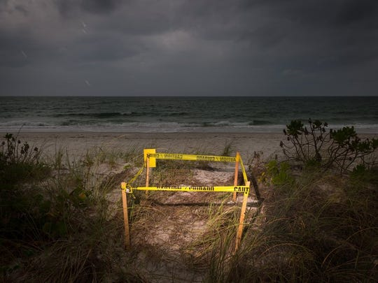 A sea turtle nest sits marked off on the beach behind