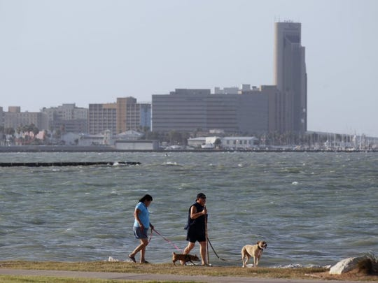 Texas Beach Watch said tests of water collected near Ropes Park showed high levels of fecal bacteria this week.