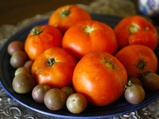 Tomatoes are a popular, beloved gardening crop in Texas.