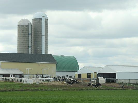 Farm 2013