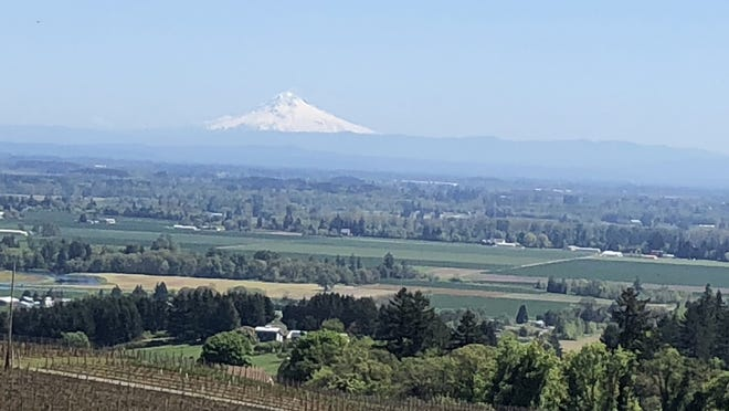 Mount Hood looms over the Willamette Valley and was visible from the deck of Brooks Winery's tasting room during a tour of the area last year.