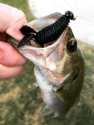 Finesse baits work well when pond fishing during the evening for bass and crappie after a hot summer's day.