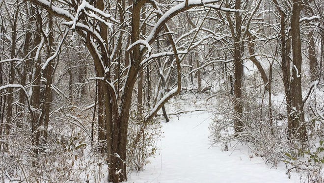 Snow blankets Trail No. 3 in Prophetstown State Park Sunday, December 24, 2017, near Battle Ground. Lafayette can expect half an inch of snow in the early morning on Friday.