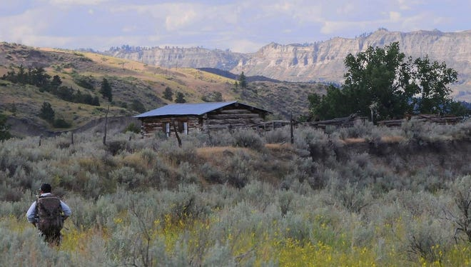 Field leader Dan Pendergraph hikes by an old homesteaders cabin that is now surrounded by sagebrush and sweet clover.
