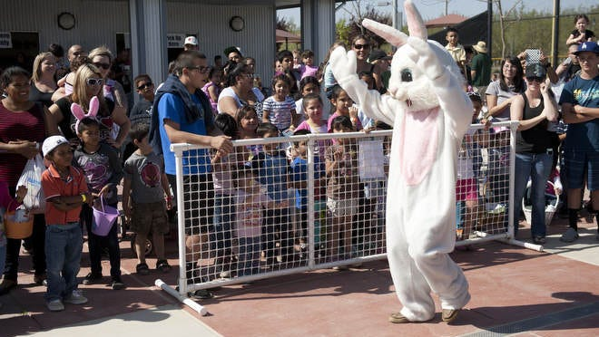 The Easter Bunny competes in the dance-off at Riverway Sports Park on Saturday, March 30, 2013 during the Eggstravaganza. A carnival during the egg hunts featured games and information booths, face painting, bounce houses, food and music.
