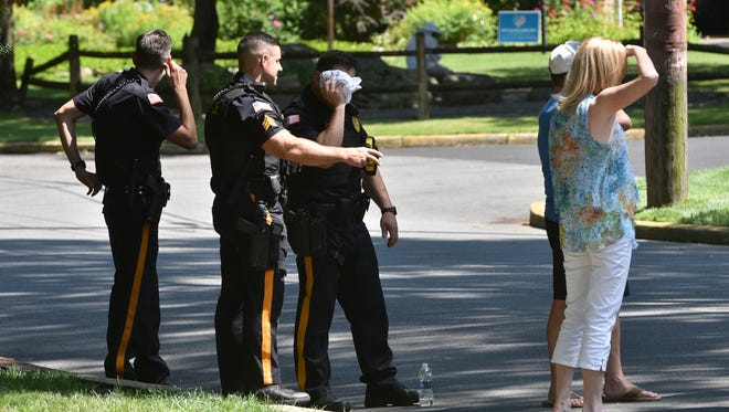 A Ramsey police officer was stung by a bee on his head on Saturday.