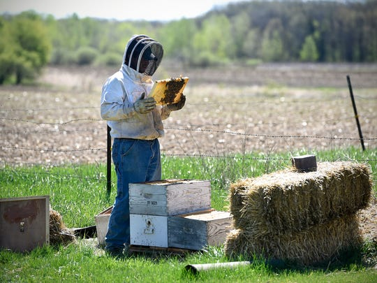 Jonathan Schmitt checks on a beehive on his family's farm Wednesday, May 4, near Rice.