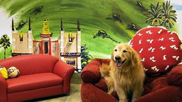 One of the custom suites at Red Dog Pet Resort & Spa.