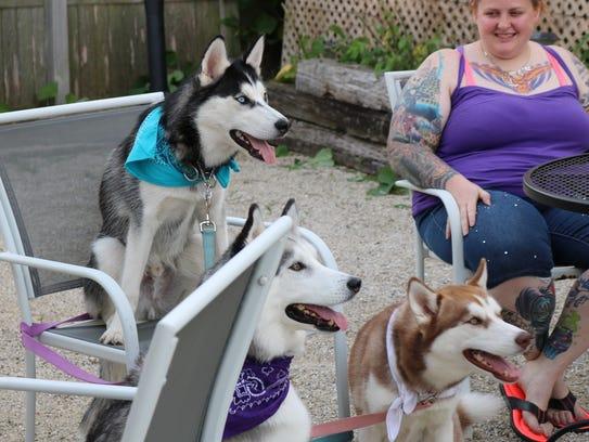 Furry guests take a seat at Yappy Hour at MoJo in Sheboygan