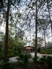 The Gator Shack Restaurant is tucked into the woods