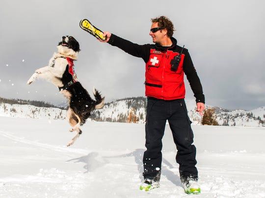 In this 2015 photo provided by Squaw Valley Alpine Meadows, dog supervisor Craig Noble puts his border collie Wylee through some paces on the mountain in Olympic Valley, Calif. Noble says dogs are better than any beacon or echo, as a good dog can check part of an avalanche grid in five or 10 minutes, the same time it would take 50 people hours to scour the same area. He has Squaw Valley Alpine Meadows and Crested Butte Mountain Resort all up to the same Canadian Avalanche Rescue Dog Association standards.