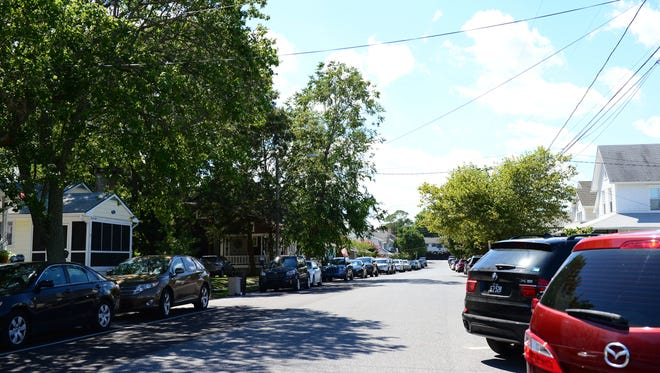 City arborist presents plans to start planting trees in Rehoboth beach.