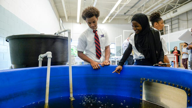 Roger Sanchez, 18, left, and Amatullah Ibnabdulkareem, 18, check on their tilapia at Willingboro High School. Students raise tilapia in a 400-gallon tank and use the waste from the fish to fertilize collard greens, kale and Swiss chard whose roots are suspended in water instead of buried in soil.