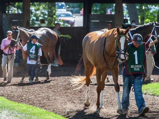 Pixie Dust (No. 1) is loped around the paddocks at Delaware Park before the start of the Delaware Oaks at Delaware Park on Saturday evening, July 5, 2014.