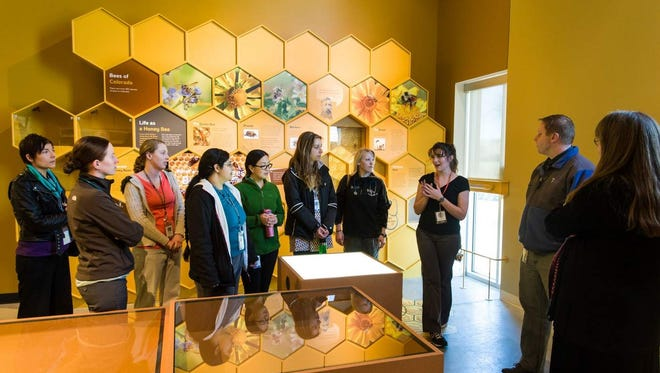 Colorado State University exotics and zoological medicine veterinarian Matt Johnston's veterinary student rotation visits the Fort Collins Museum of Discovery's new live animal exhibit.