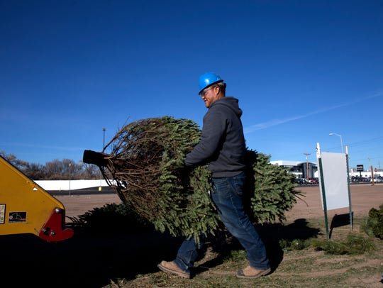 Leland Neswood a park maintenance worker with the city of Farmington's Parks, Recreation and Cultural Affairs loads a tree in to a wood chipper on Thursday at Berg Park.