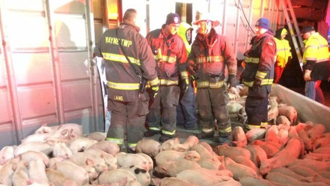 A truck hauling 2,000 pigs overturned on the city's Westside Thursday night.