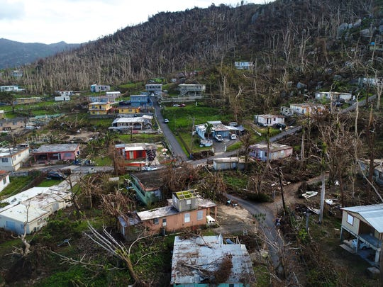 Damaged homes and trees stripped of their leaves are