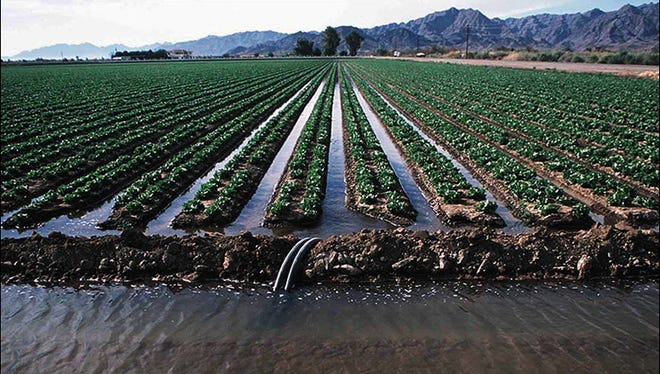 Nontraditional irrigation water on food crops is being studied.
