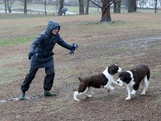 Kathy Savolt from Mamaroneck plays with her dogs Evie