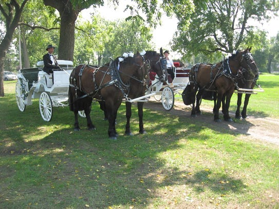 Horse-drawn carriage ride (Photo: Special to the Register)